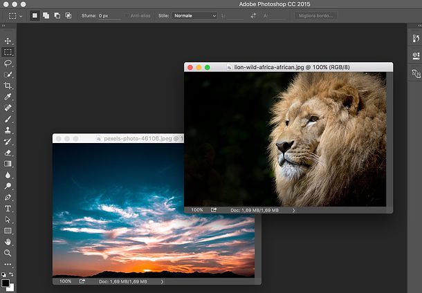 Adobe Photoshop y Adobe Photoshop Lightroom